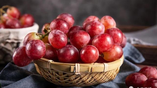 葡萄长势过旺的危害及解决办法
