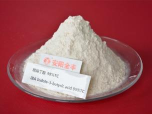 吲哚丁酸 98%原药-08