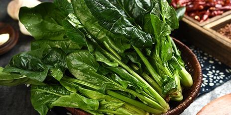 464X232 菠菜